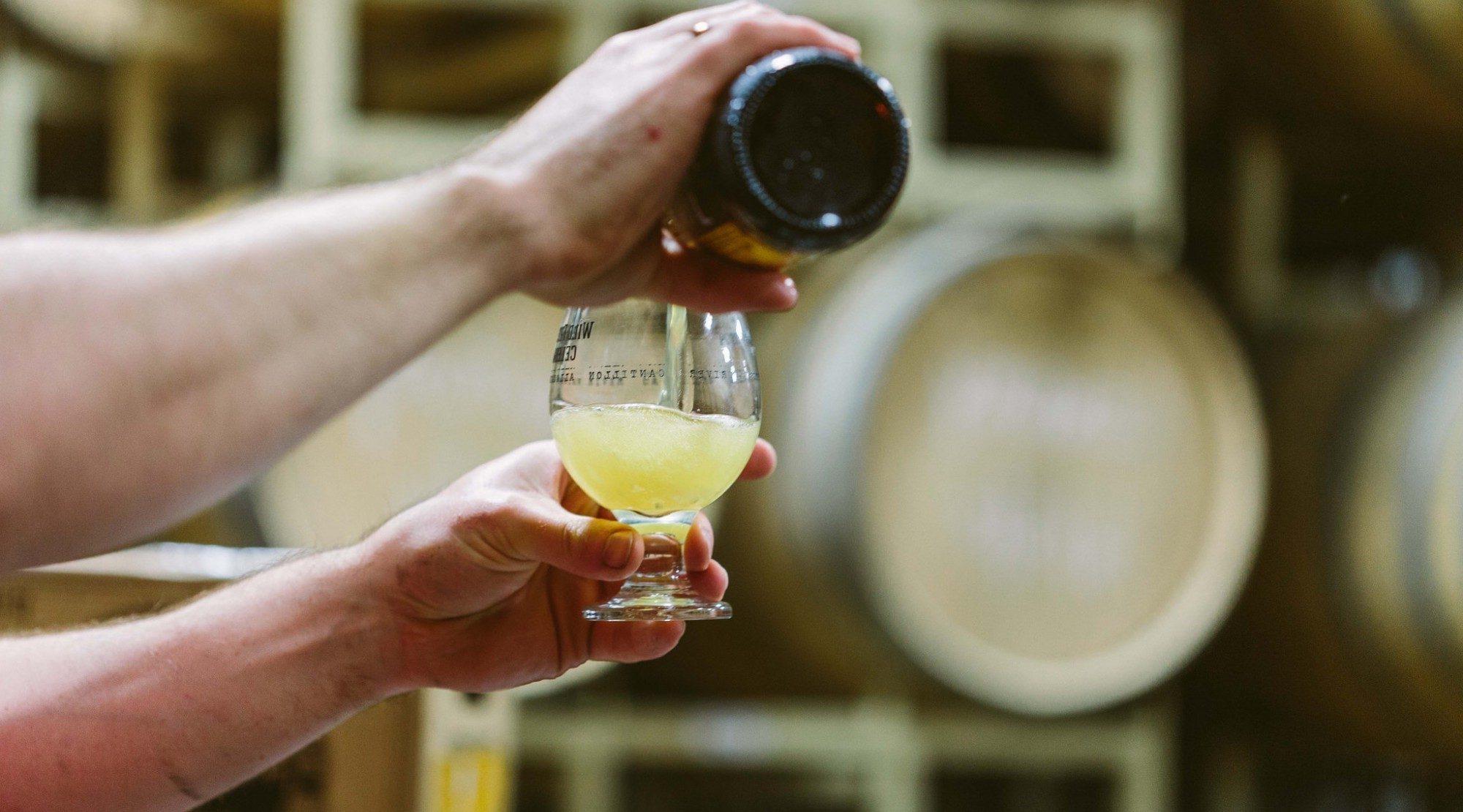 cerveza ácida o cerveza sour - Birra365